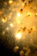 fireworks-725134__180.jpg