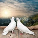 Écriture,amour divin,âmes jumelles